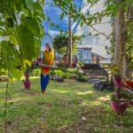 Villa Le Plessis jardin3