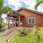 Palmier extérieur3 | Villas Ti Créole | Hébergement Vacances Guadeloupe