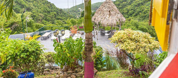 Palmier Paillote | Villas Ti Créole | Gites Vacances Guadeloupe