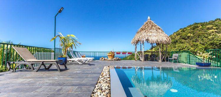 Gite Arbre à Pin piscine Vacances en Guadeloupe